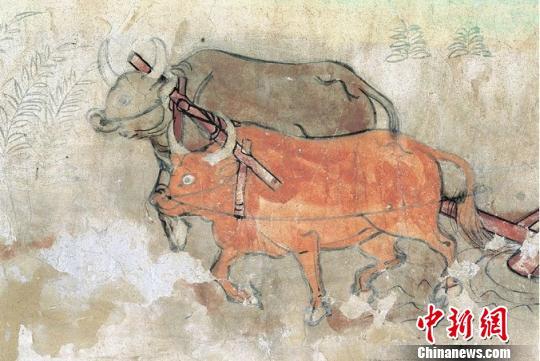 图为榆林窟第25窟中唐二牛抬杠。 敦煌研究院供图
