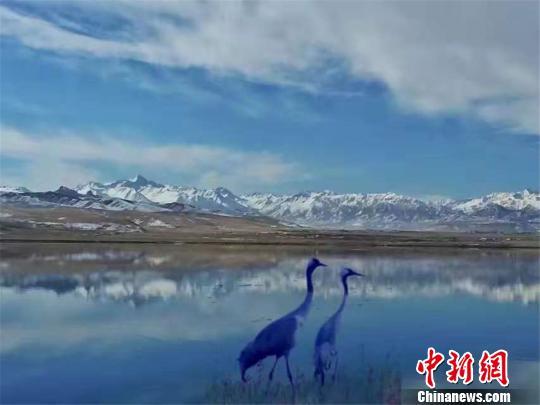 雪后的肃南如诗如画。 郎文瑞 摄