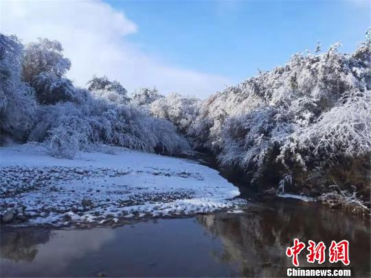 一场降雪肃南现银装素裹的秋日美景。 郎文瑞 摄