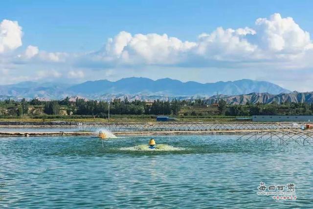 改革开放四十年,用数据看景泰从戈壁滩到 米粮川的巨变