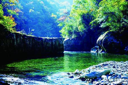 每日甘肃网 甘肃经济网 地理/旅游  团鱼河景区的索桥横跨白龙江两岸