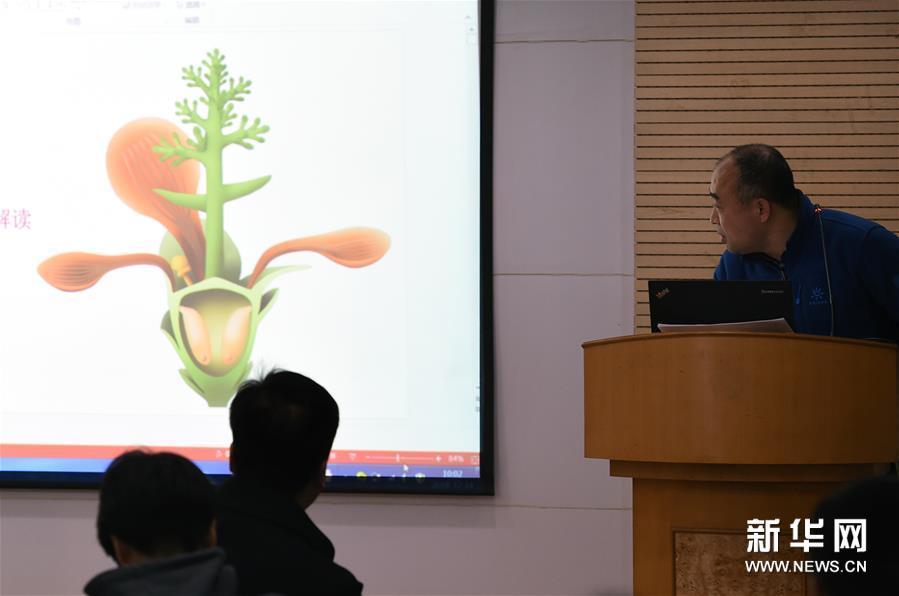 """(图文互动)(1)这朵""""南京花""""开了1.74亿年――科学家发现世界最古老的花朵化石"""