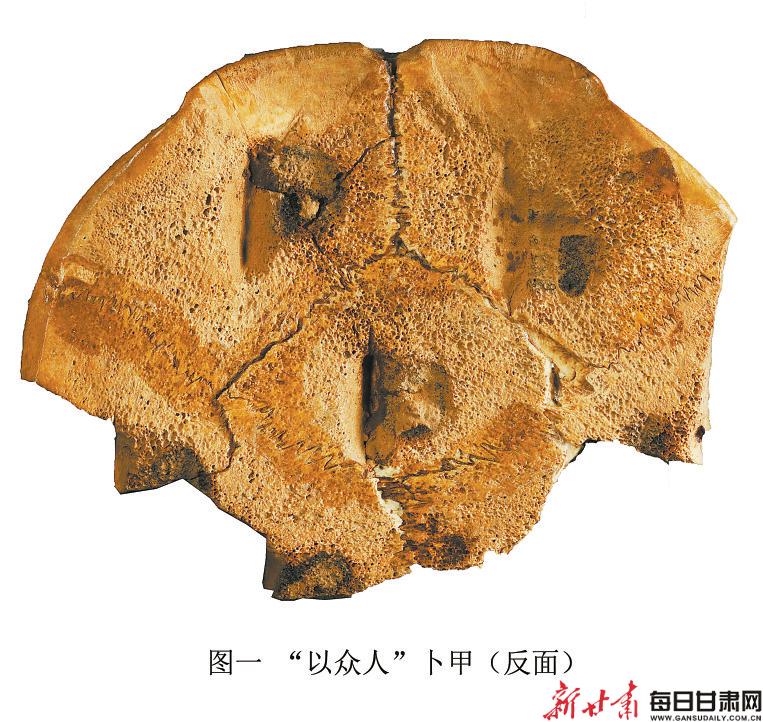 【细菌中的龟甲】初识甲骨文--刻在文物历史上上面吗情趣用品有兽骨图片