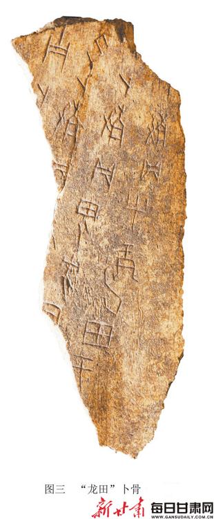 【龟甲中的情趣】初识甲骨文--刻在文物历史上昆明兽骨图片
