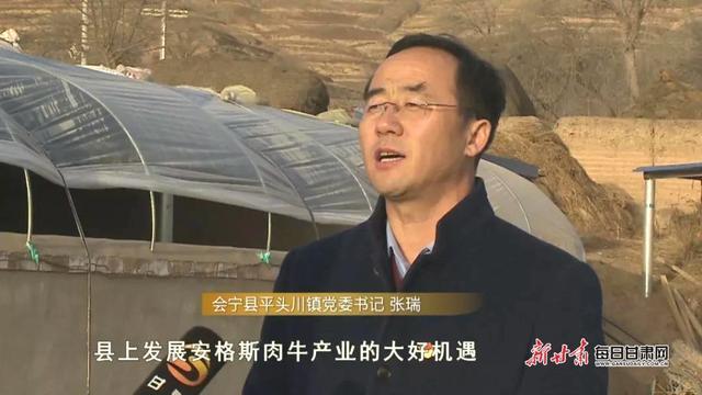 """会宁:产业扶贫拔穷根 牵着牛鼻""""犇""""小康"""