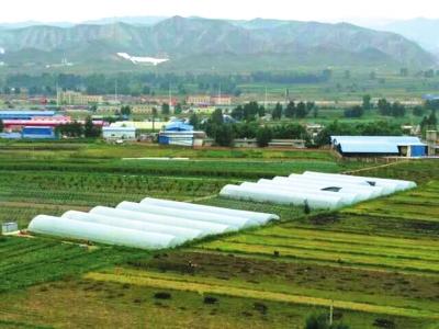 兰州返乡创业者阎怀颖:通过休闲农业带动100多农户脱贫增收