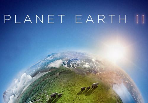 《地球脉动Ⅱ》
