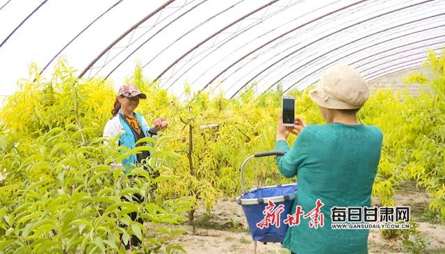 图为,游客在温室内拍照副本.jpg