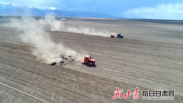 山丹马场7.8万亩燕麦草开始播种