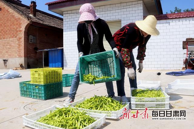 村民晾晒刚采摘的黄花菜通讯员盘小美摄.jpg