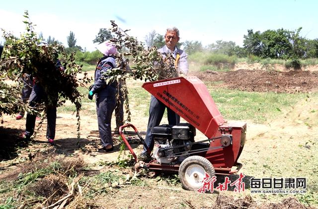 西峰区三姓林果专业合作社工人在粉碎树枝.JPG
