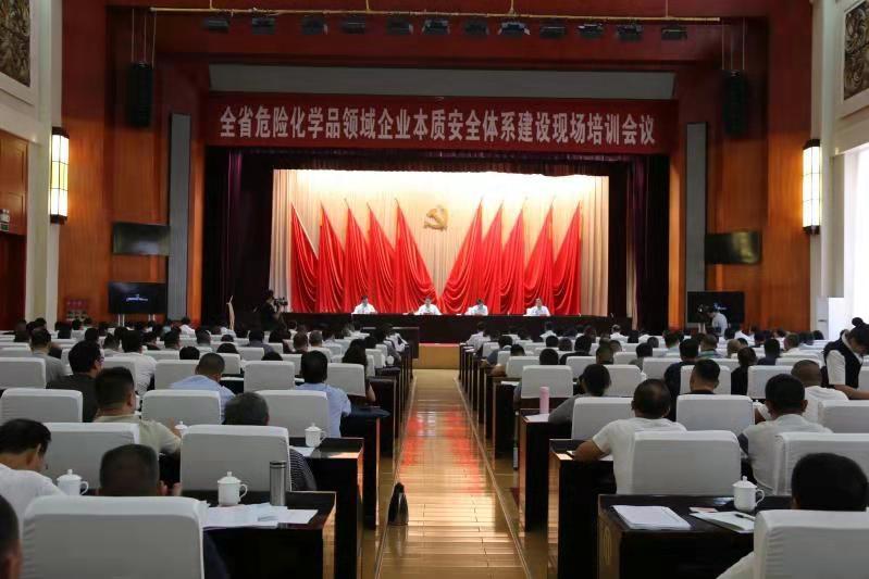甘肃省召开危险化学品领域企业本质安全体系建设现场培训会