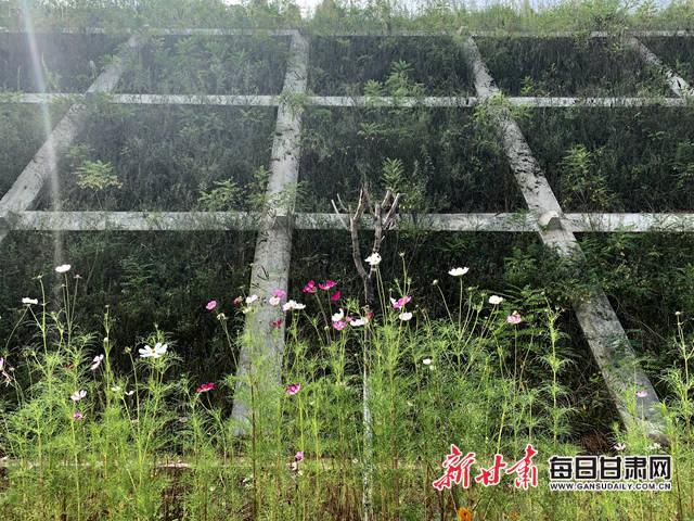 http://kshopfair.com/caijingjingji/232211.html