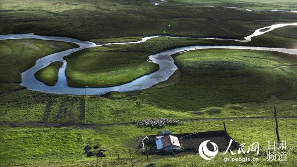 甘南藏族自治州境内的草原。(甘南州委宣传部供图)