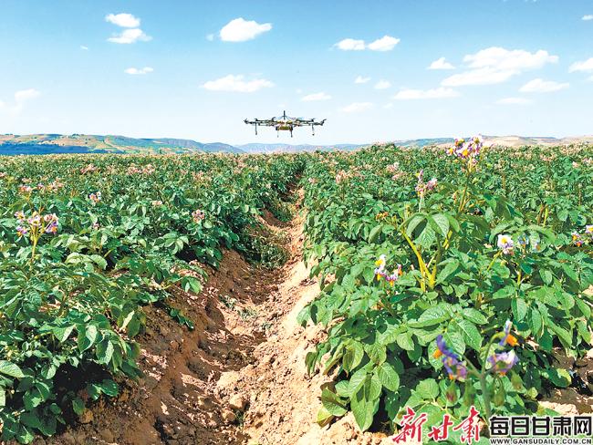 关注农民专业合作社系列报道之四