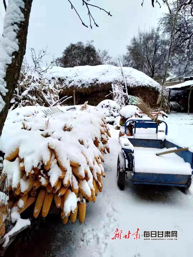 甘肃多地降雪降温 兰州开展人工