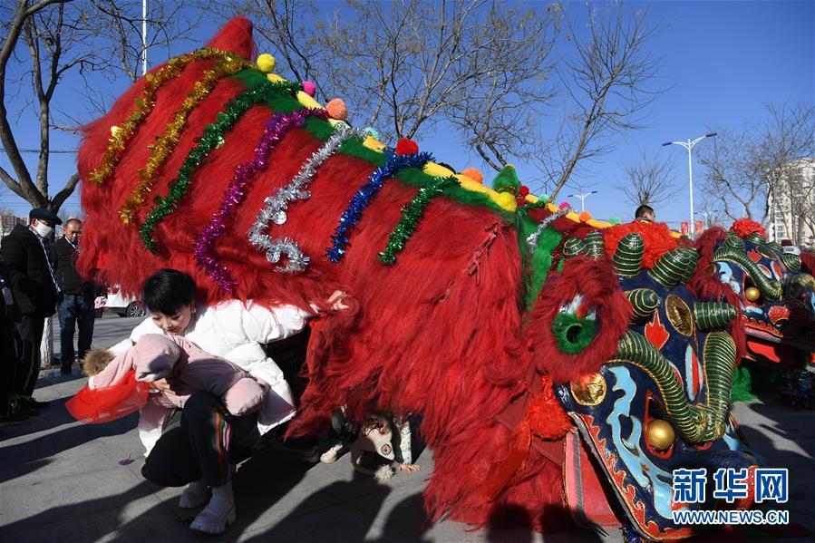 (社会)(6)甘肃永登:硬狮子 舞起来
