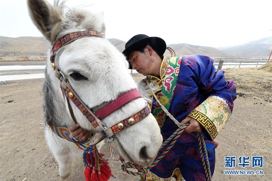 """(脱贫攻坚)(9)从贫困户到致富能人――藏族村民宋天柱""""变身""""记"""
