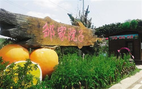 """重庆忠县打造出出一产""""接连连续不停""""完整产业链链链—— 这里的柑橘分外香甜"""