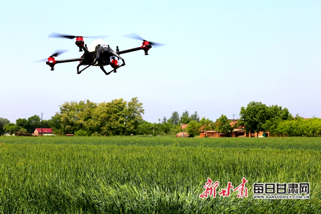 图为工作人员使用无人机喷洒农药翟娜娜摄.JPG