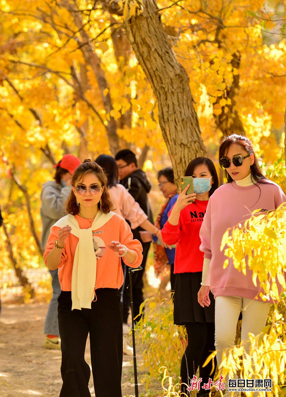 10月11日,游人在敦煌莫高镇胡杨林观赏浓浓的秋色。.jpg