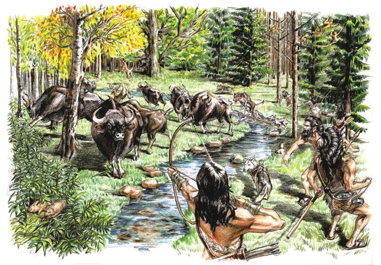 兰州大学研究发现热带牛科动物曾向北迁徙至青藏高原