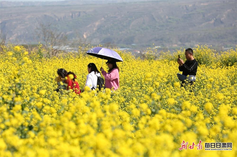 02――4月18日,游客在刘家沟村千亩油菜花海中赏景游玩。.JPG